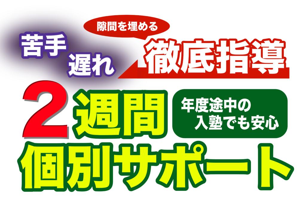 【バナー】2週間個別サポートver.3